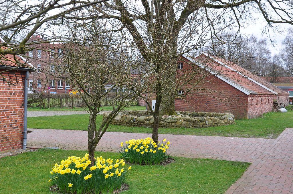 Frühling auf dem Heimathof
