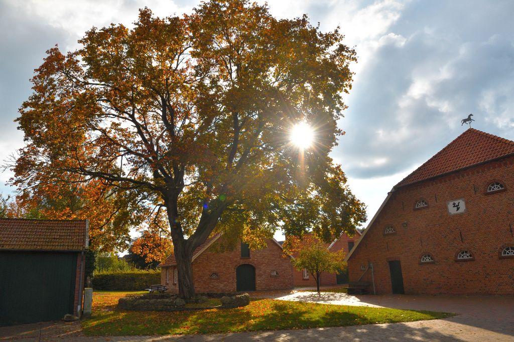 Herbst auf dem Heimathof